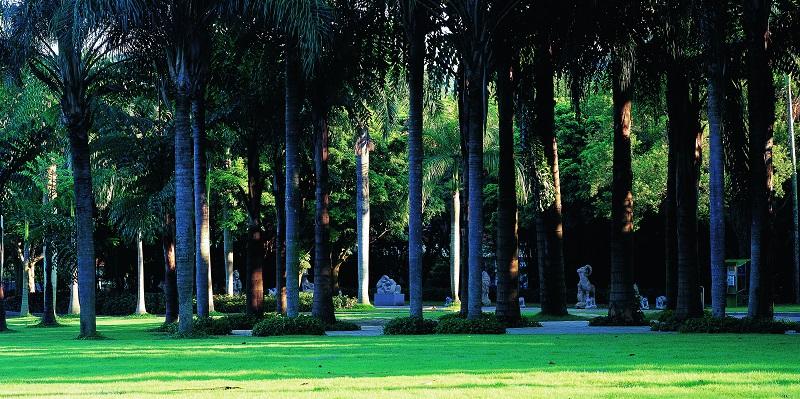 13-1棕榈园.jpg
